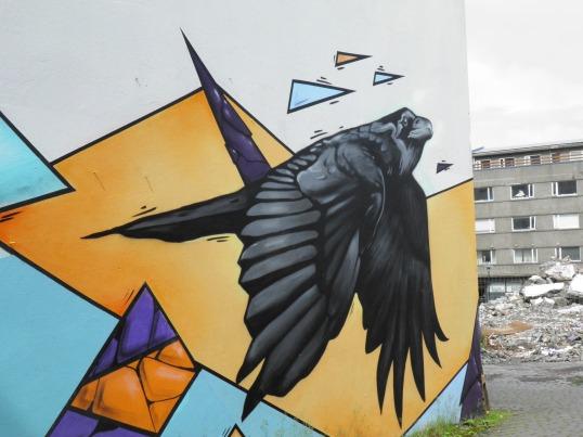 Crow art in Reykjavik