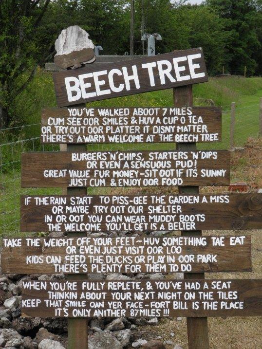 Beech Tree signage