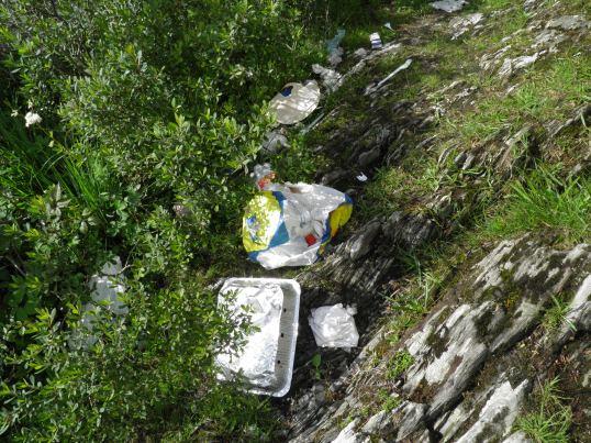 Rubbish - the scar on the Loch Lomond landscape