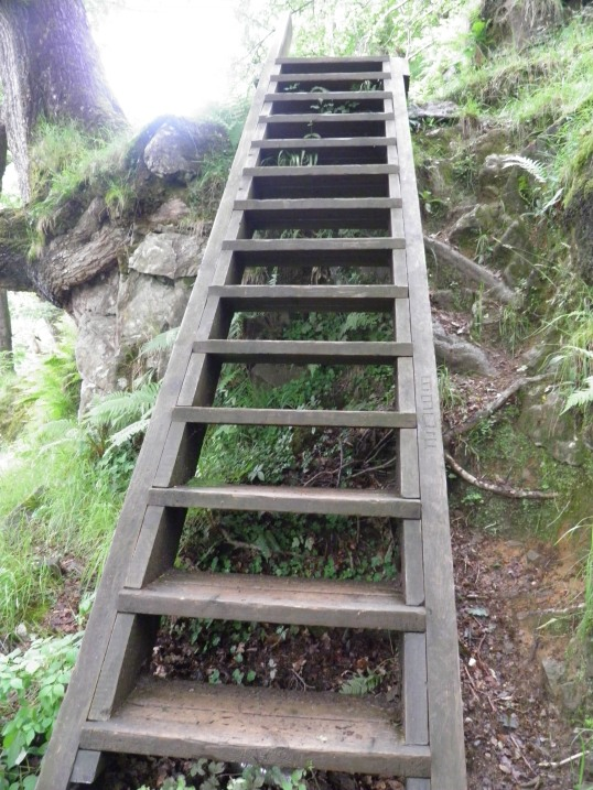 Ladder on the WHW