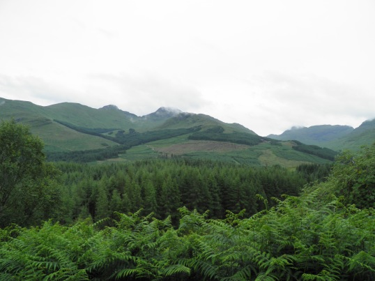 Stirlingshire countryside
