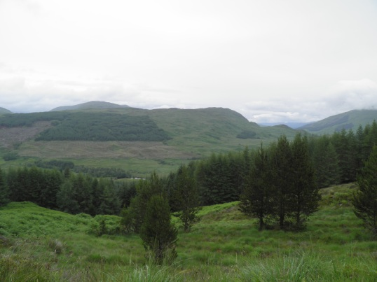 On route to Tyndrum