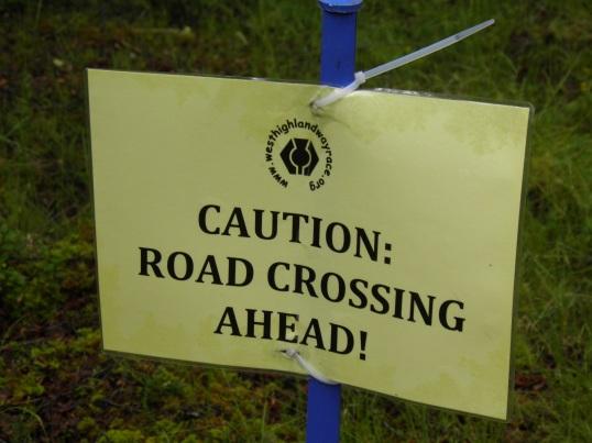Road crossing ahead