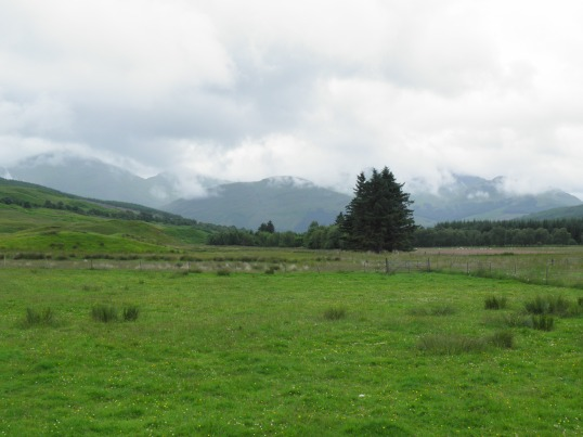Pasture land by Kirkton farm