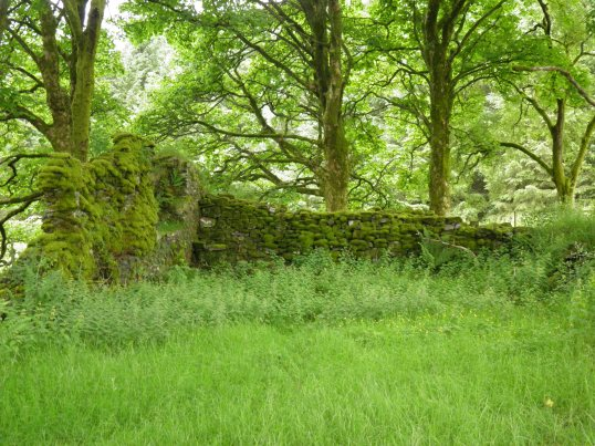 The remains of St Fillan's church
