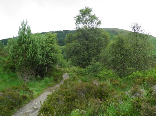 South of Tyndrum