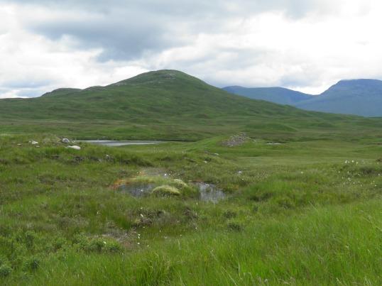Boggy Rannoch Moor
