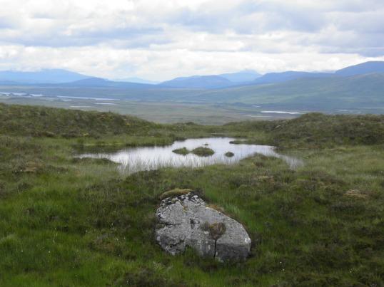 Rannoch Moor rolls east into the distance