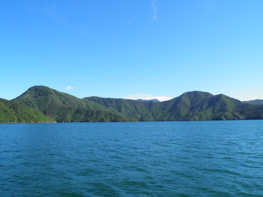 Sailing through the Queen Charlotte Sound