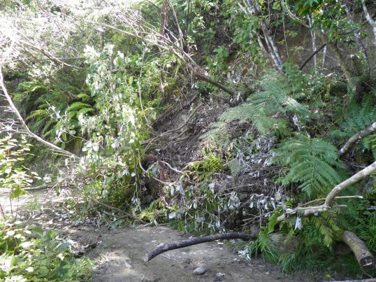 Landslip blocking most of the path
