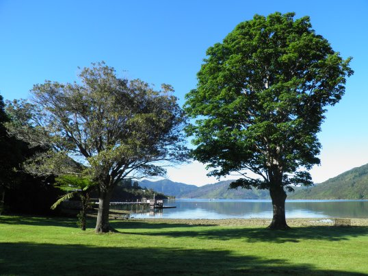 Morning sunshine at Furneaux Lodge
