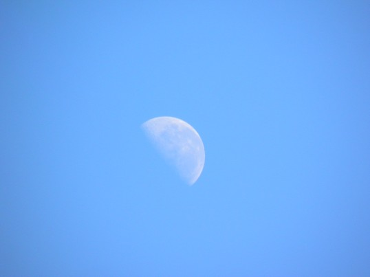 Half moon in the daylight