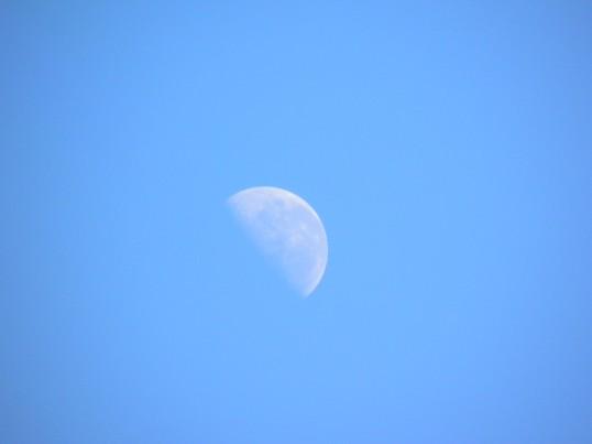 Half moon in the daylight
