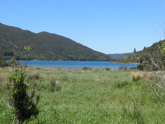 Head of Endeavour Inlet