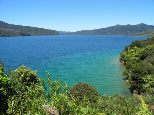 Blue waters of Endeavour Inlet