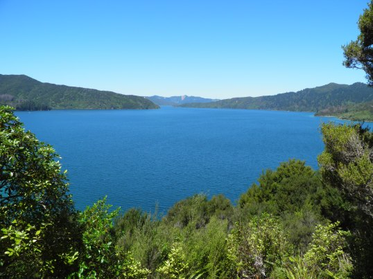 Endeavour Inlet opens into the Queen Charlotte Sound