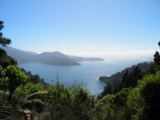Looking out towards a hazy Queen Charlotte Sound